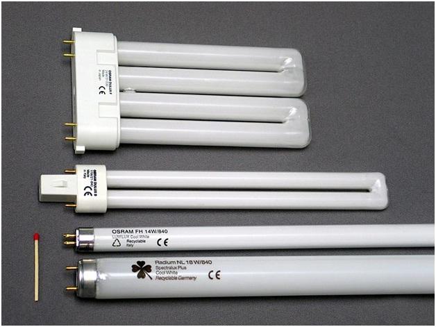 Устройство люминесцентных ламп