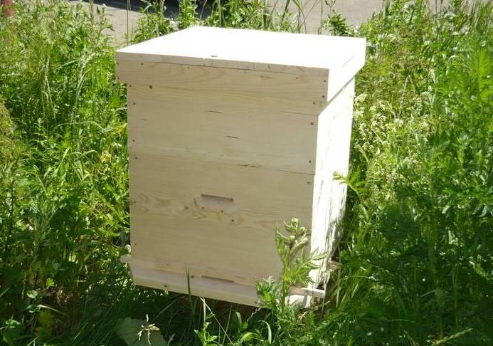 Пчелы и улики своими руками фото
