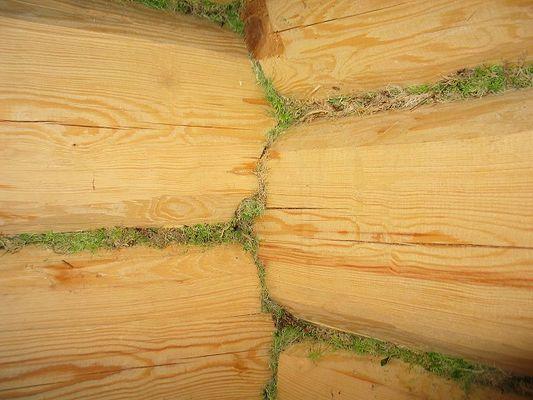 Утепление потолка бани мхом
