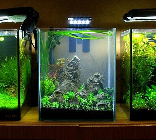 Освещение аквариума светодиодами своими руками