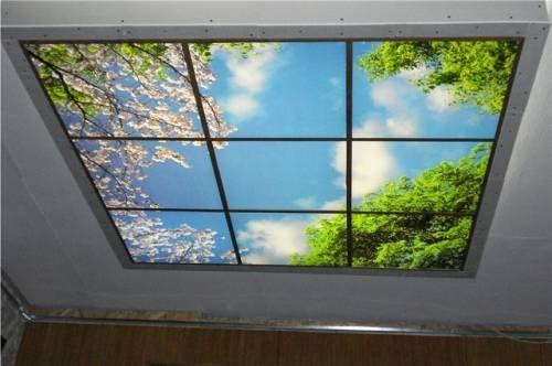 Живые потолки своими руками