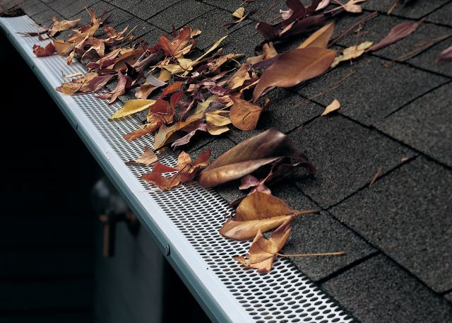 Are Gutter Guards Worth It Pine Needles 5mm