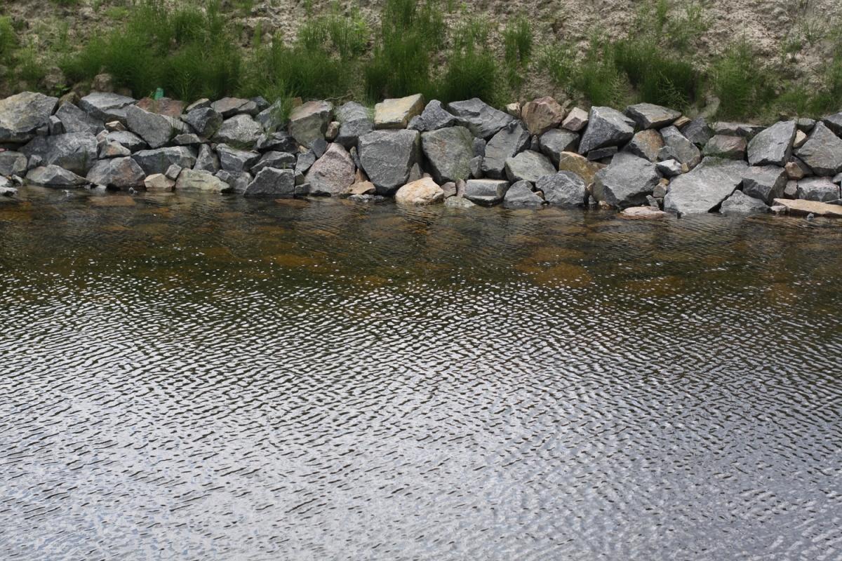 Берег водоема своими руками
