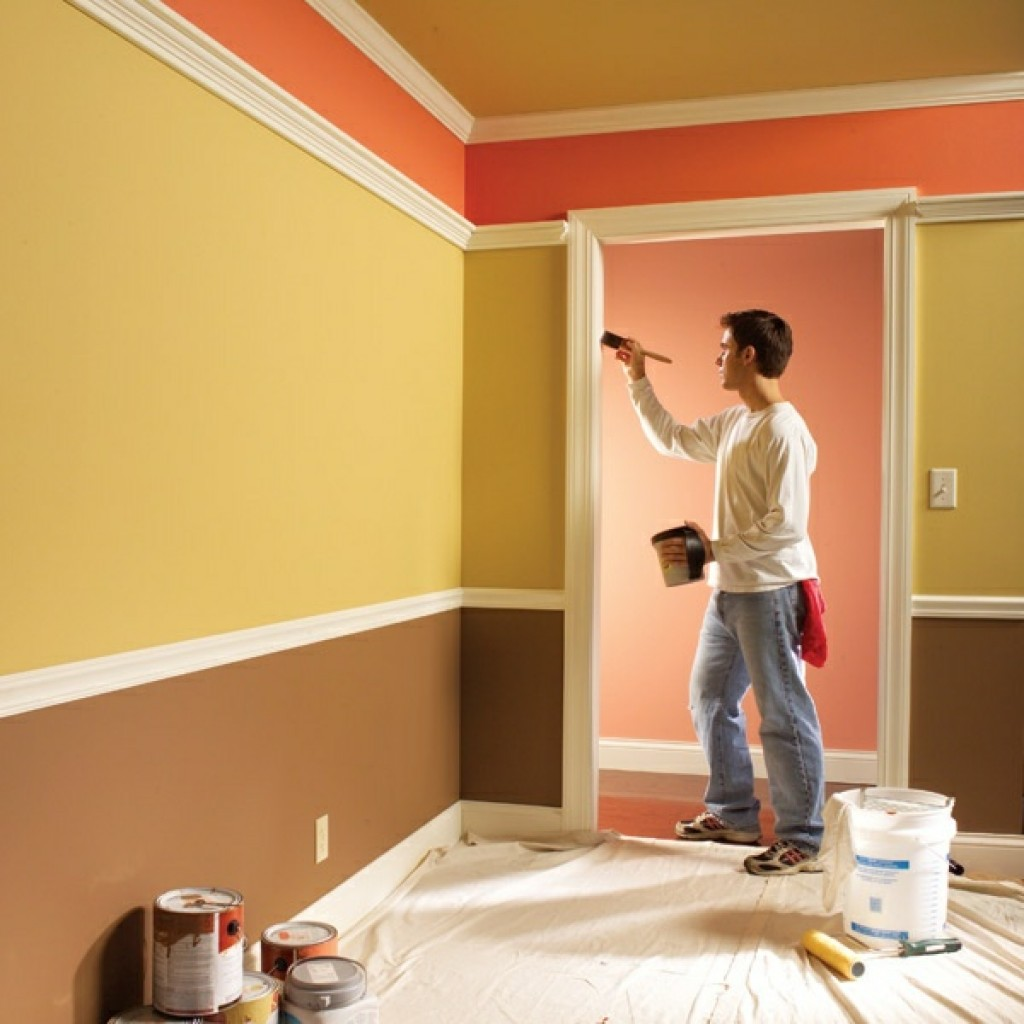 for Paints for house interior photos