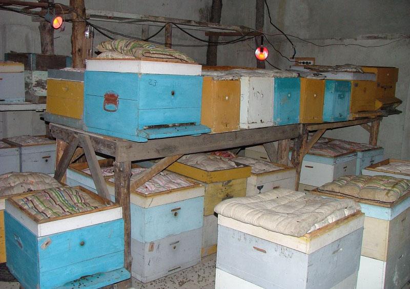 Омшаник для пчёл
