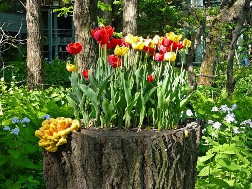 Уличные вазоны для цветов – оригинальные идеи для воплощения
