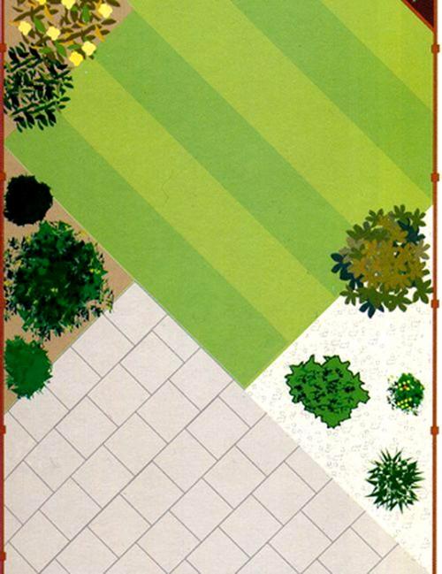 Как посадить газонную траву на участке своими руками