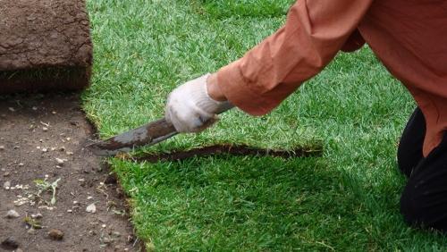Как снять старый рулонный газон - разрезам на рулоны