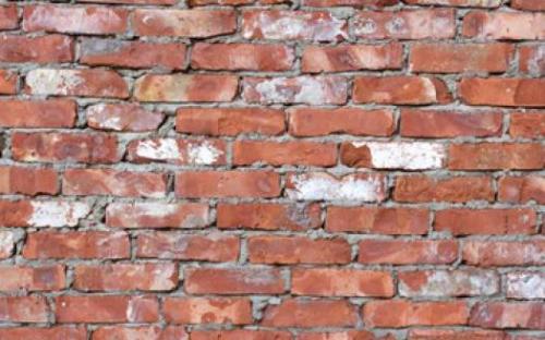 Обработка стен от плесени, Строительный портал