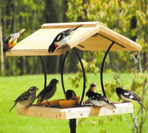Картинки по запросу кормушка для птиц своими руками