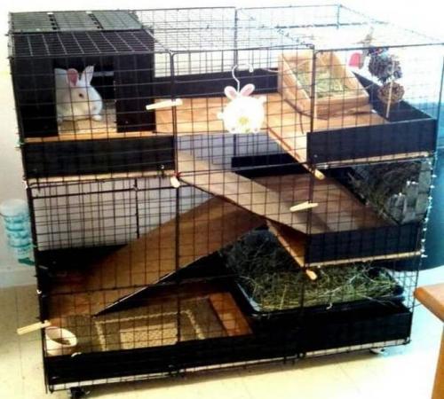 Картинки по запросу клетка для кроликов
