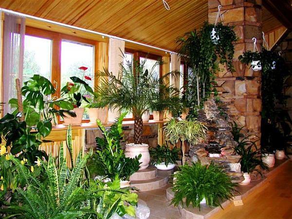 Дома с зимним садом своими руками